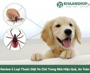 Review 5 loại thuốc diệt ve chó trong nhà hiệu quả
